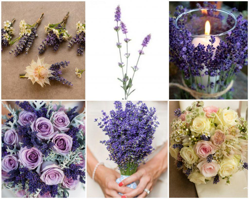 Flori In Culoarea Anului 2018 Ultraviolet Flowersbyanaro Blog